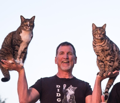 CATMANTOO is creating content to help cats live long healthy